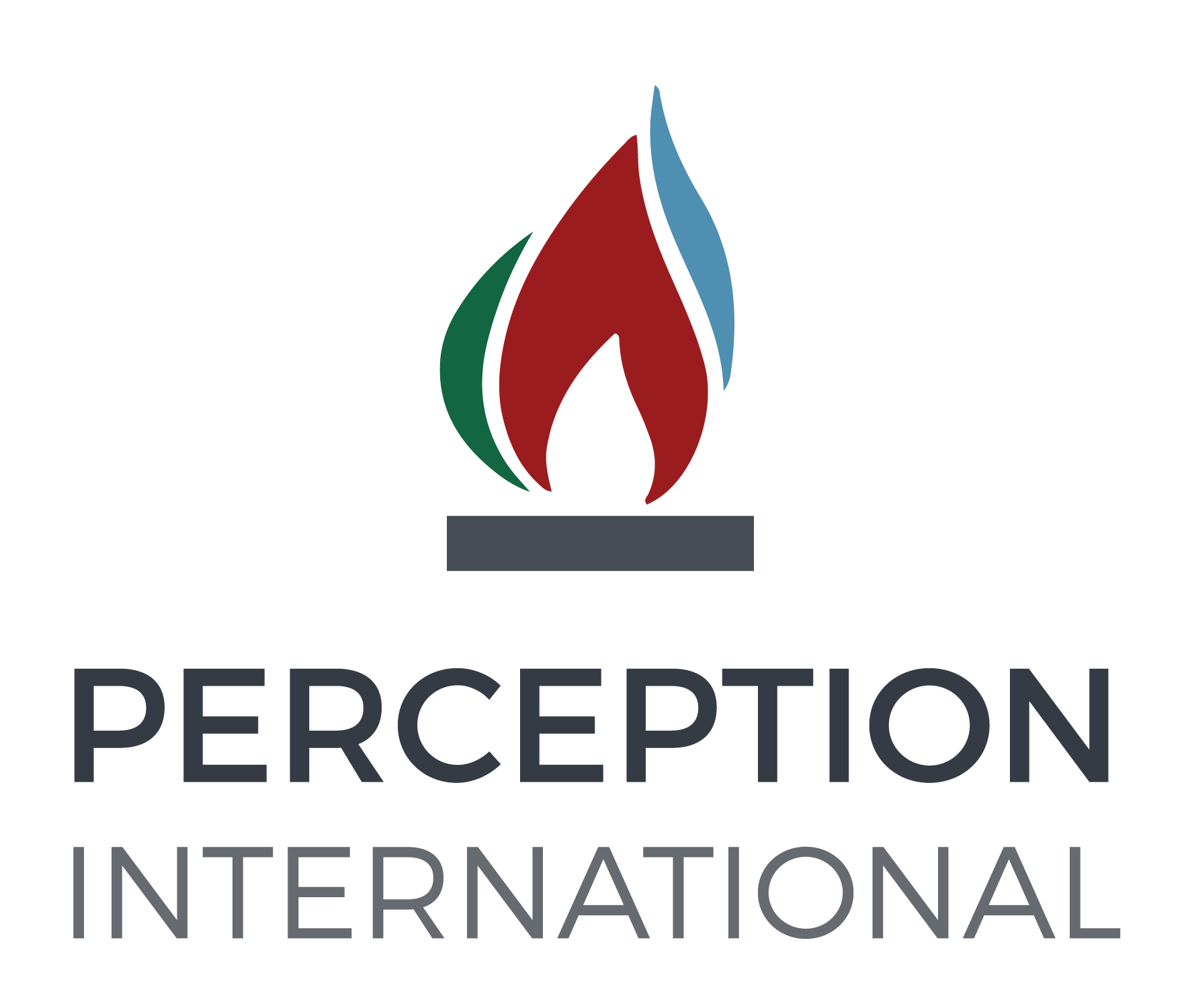 Perception International